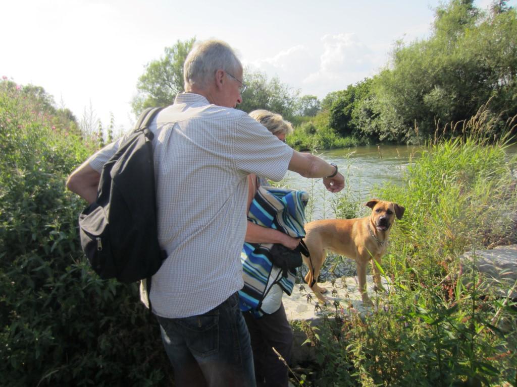 Hundetherapie - Bella hört zu