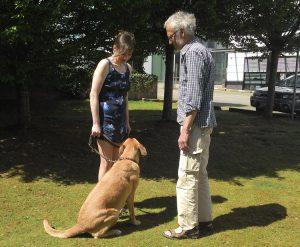 Arbeit mit Klient und Hund